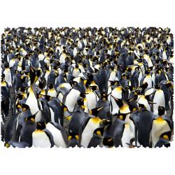 Micro Puzzle - Penguins Pandemonium