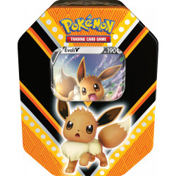 Pokémon Pokébox Noël 2020 - Evoli V
