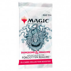 Booster collector Magic Dungeons & Dragon