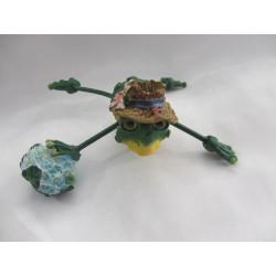 Grenouille fofolle avec fleurs bleu à piquer