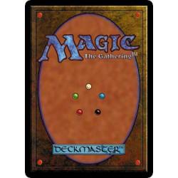 Lot de 25 cartes magic en blanc