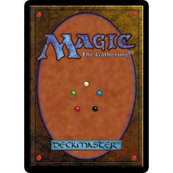 Lot de 25 cartes Magic MTG couleur verte