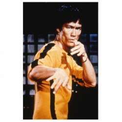 Protège-cartes illustré max protection bruce lee standard
