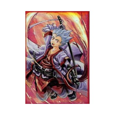 Protège-cartes illustré max protection samurai kid standard