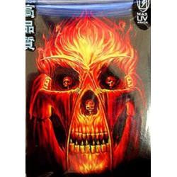 Protège-cartes illustré max protection flaming altar standard