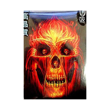 Protège-cartes illustré max protection flaming altar standard