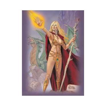 Protège-cartes caldwell - sorceress standard