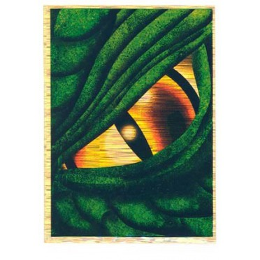 Protège-cartes illustré max protection dragon eye green standard