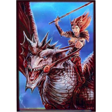 Protège-cartes illustré max protection dragon rider standard